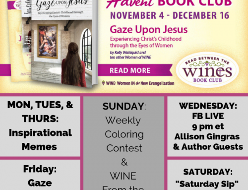 Are You Ready? Order Your Gaze Upon Jesus Bundle by Oct. 27th!