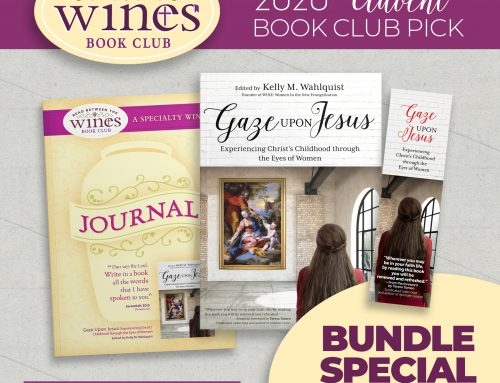 Facilitate a Gaze Upon Jesus Book Club