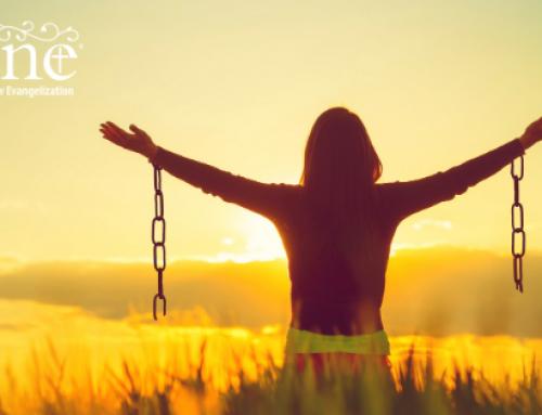 Freedom in Forgiveness