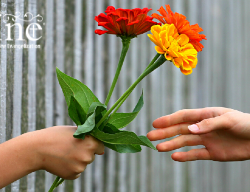 Called By Name: Forgiveness Lessons from a Friend